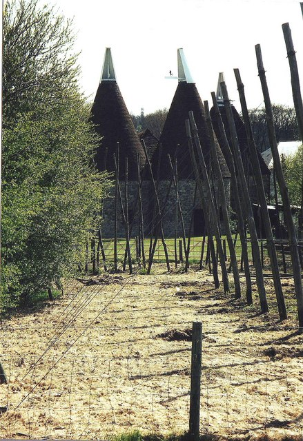 Oast house and hopping stakes, Museum of Kent Life, Maidstone