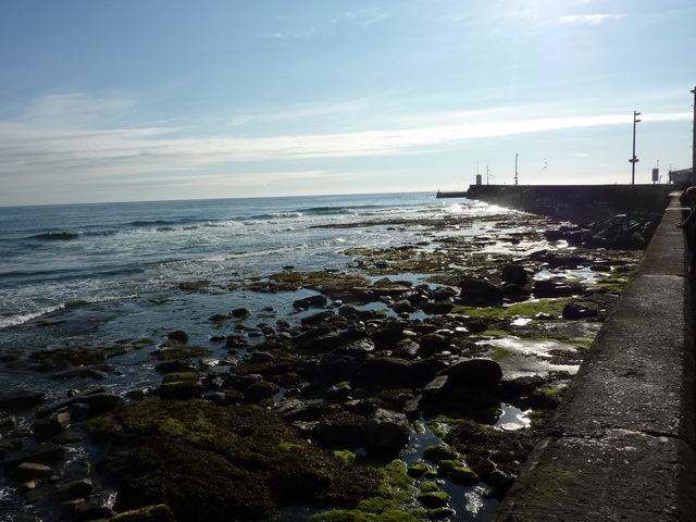 Sea ward side of the harbour wall, Seahouses