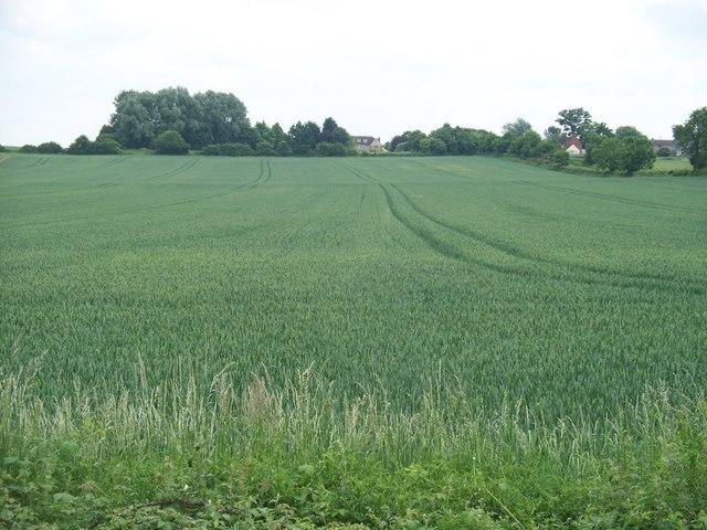 Warwickshire Farmland
