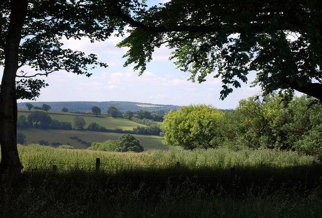 View through the trees above Week Farm