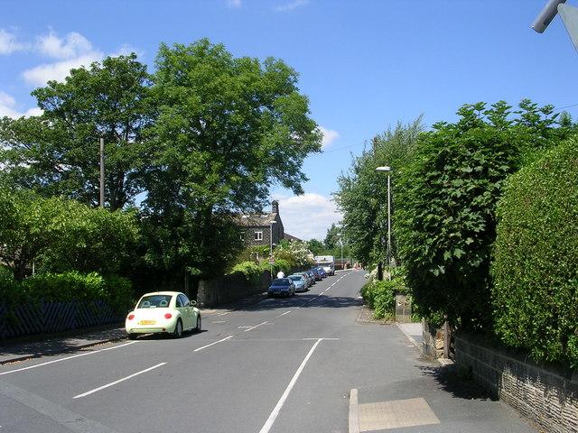 Back Lane - Park Road