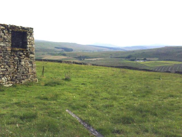 Ruined Barn in sheep pasture