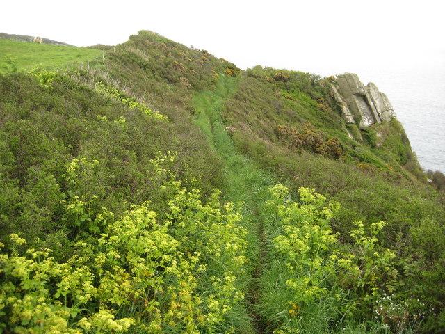 Coast path above Le Scathe Cove