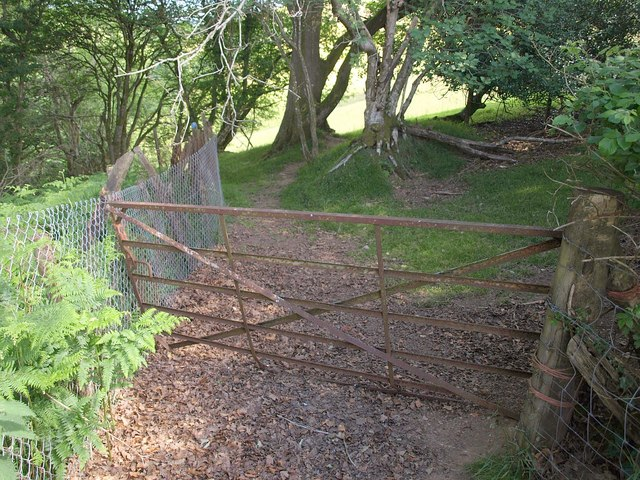 Gate across bridleway, Northern Wood