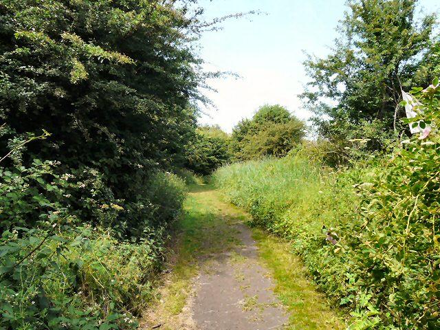 Path to Kingston Rec