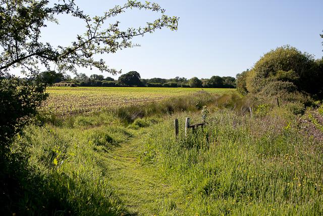 Avon Valley Path at Kingston