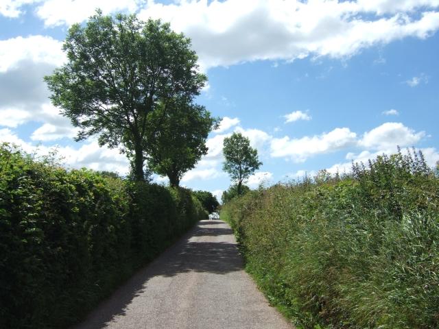 Road to Cheriton Fitzpaine