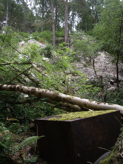 Former quarry site in Annisland Park