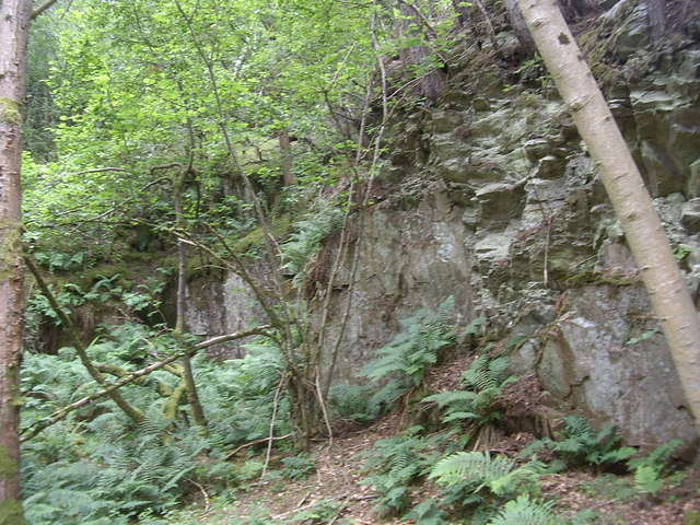 Old quarry face in Annisland Park