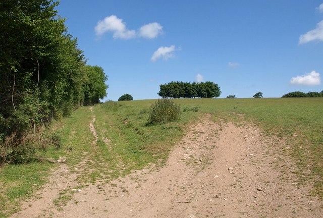 Wry Lane