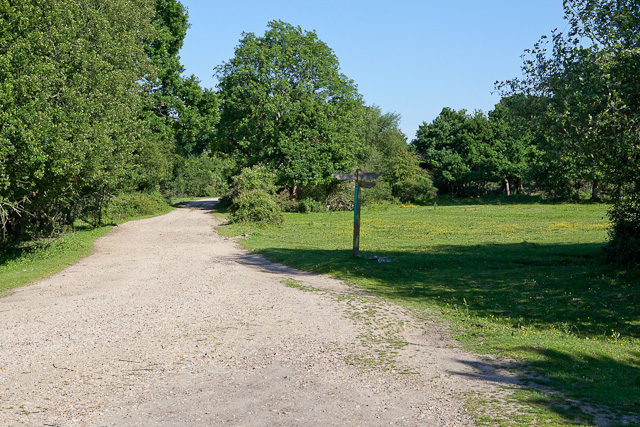 Track and footpath junction on Kingston North Common
