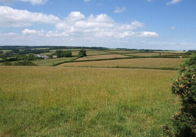 Farmland at Fryan Farm