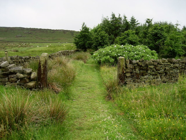 Right of Way South of Little Moss