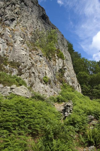 Wallowbarrow Crag