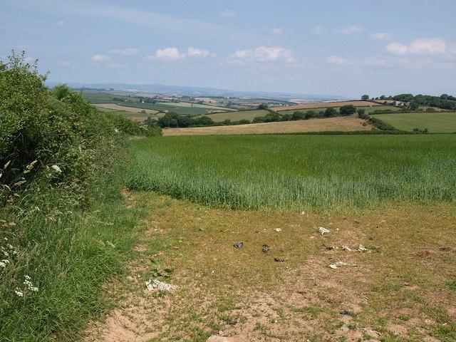 Field above Capton