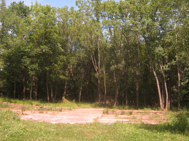 Building Foundation near Clay's Wood