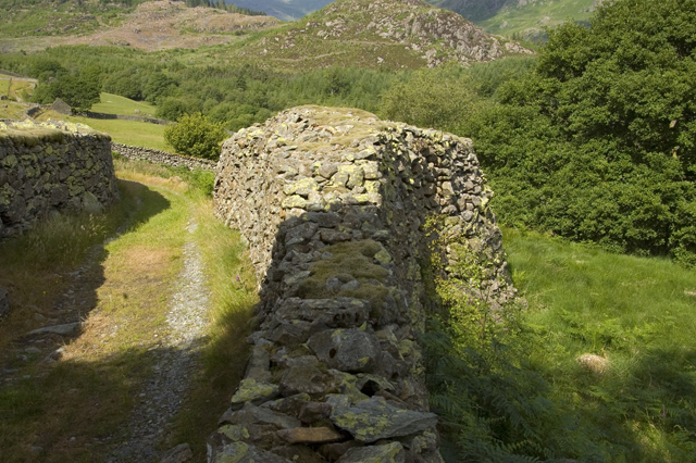 The fattest dry stone wall in Lakeland?