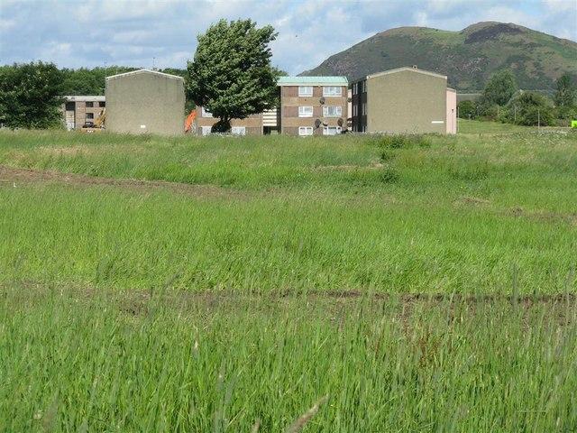 Unused housing at Greendykes