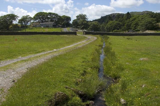 Road to Turner Hall Farm