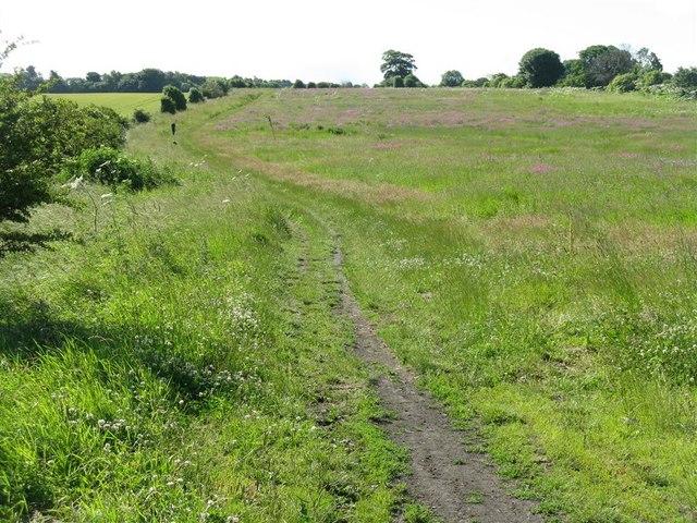 Path from Greendykes to Edmonstone