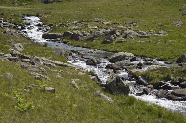 Tarn Beck below Black Allens