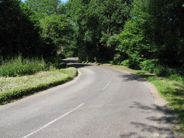 Mill Lane approaching Heyshott Common