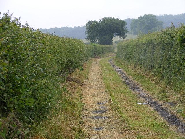 Shipley Hall Track View