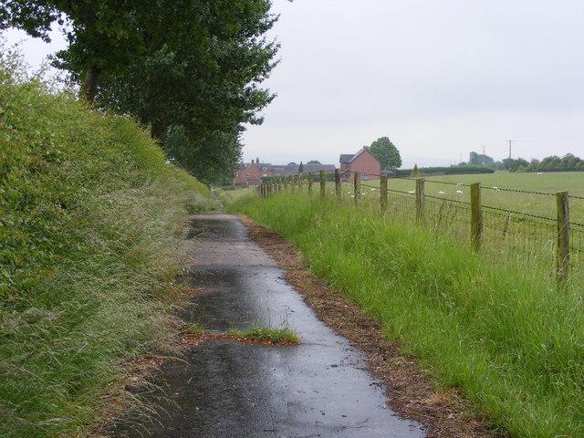 Wolmore Lane View