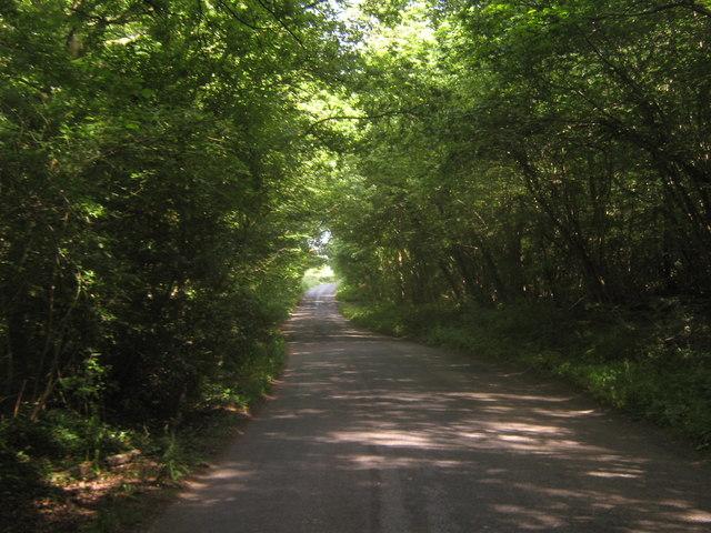 Lane between two Hursts