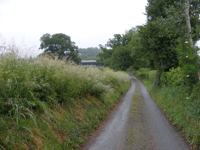 Lane to Hill End