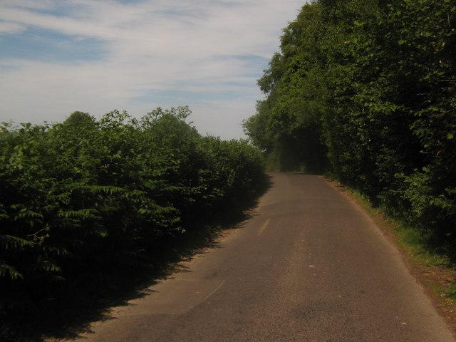 Lane to Hoath Corner