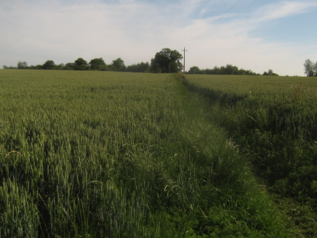 Footpath towards Chiddingstone Hoath
