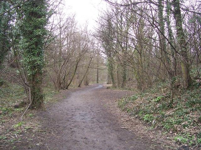 Footpath through Bray Plantation