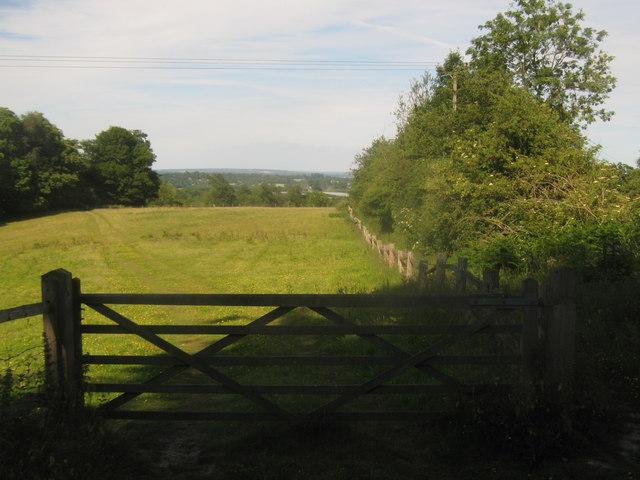 Gate near Puckden Wood