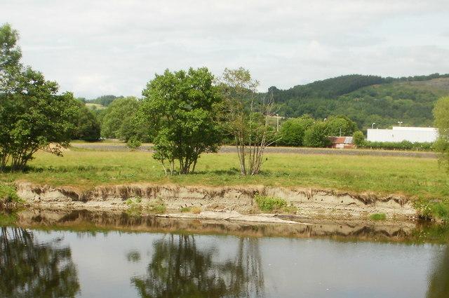 Bird nesting riverbank holes, River Wye, Builth Wells
