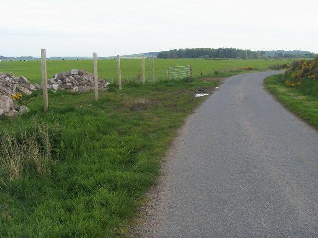 Road to Woodside