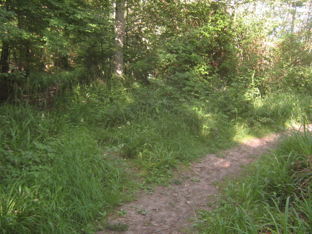 Footpath junction near Russell's Wood