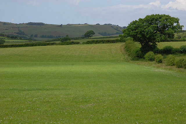 Field north of Rhos-y-garth