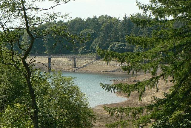 Trentabank reservoir  June 2010 (2)