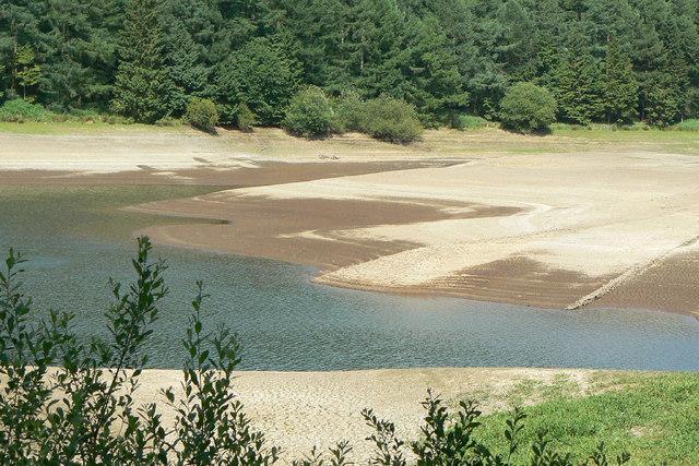 Trentabank reservoir  June 2010 (5)