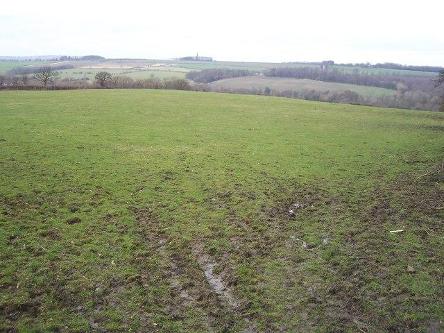Footpath to Trowles Wood