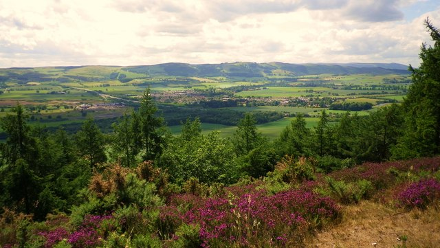 Earn Valley