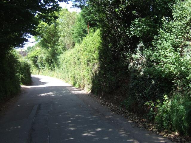 Road from the north into Cheriton Fitzpaine