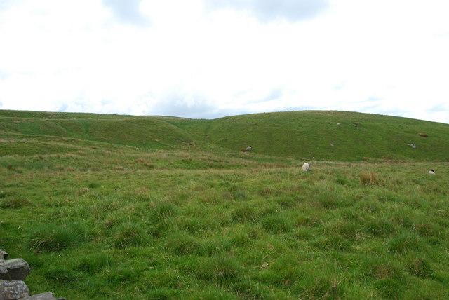 Upland grazings beside Moor Head Lane.