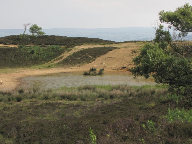 Tarn on Penistone Hill