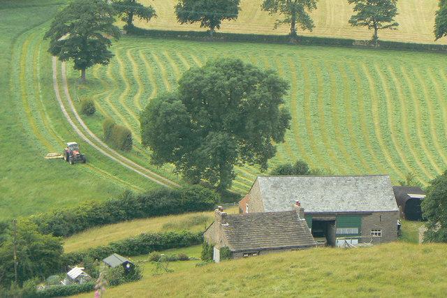 Haymaking at Cophurst