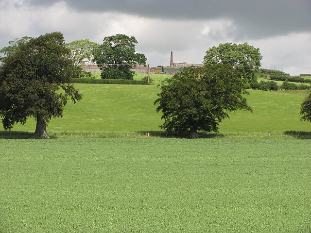 Butchercote