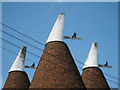 TQ7038 : Cowls of Church Farm Oast by Oast House Archive