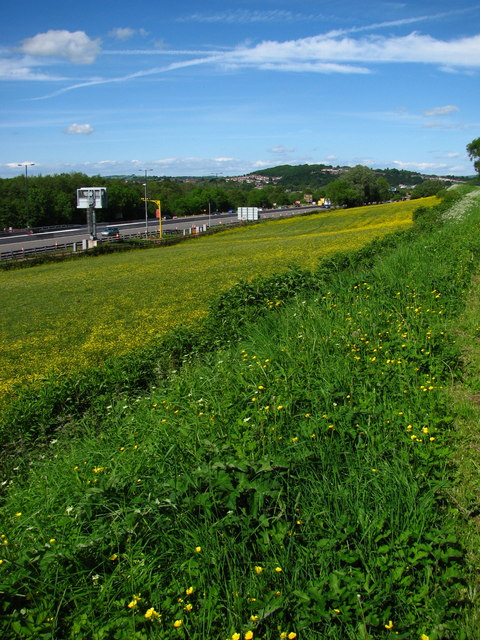 Motorway near Ynysyfro