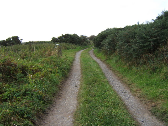 Track from Hide towards Visitor Centre
